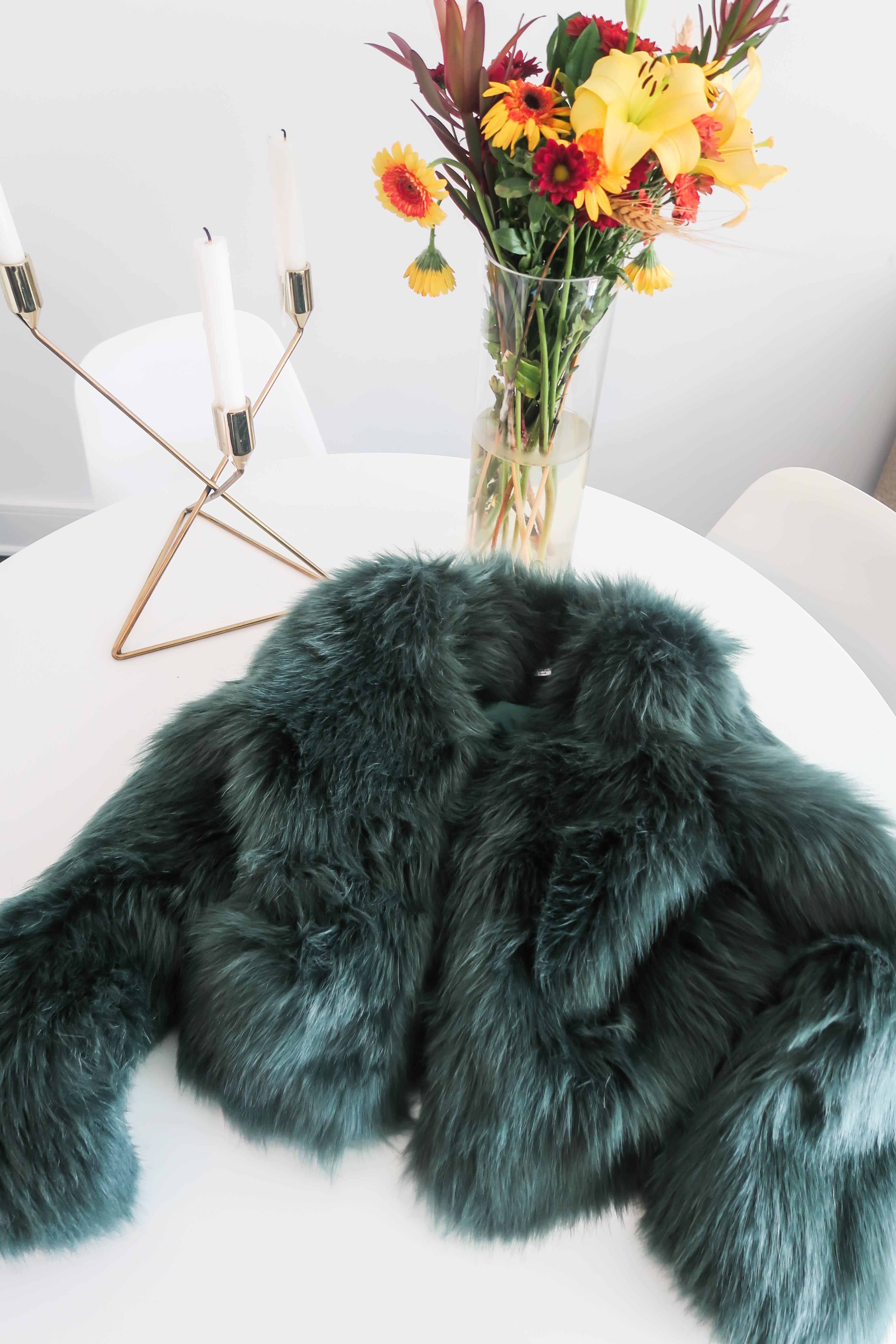 furry (1 av 1)
